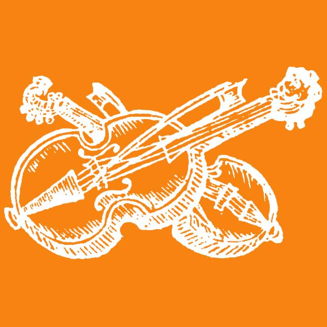 Geigenunterricht Kiel | Ilja Dobruschkin